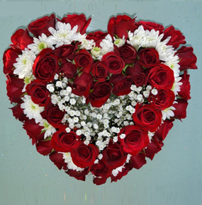 50 Red Roses in a heart shape